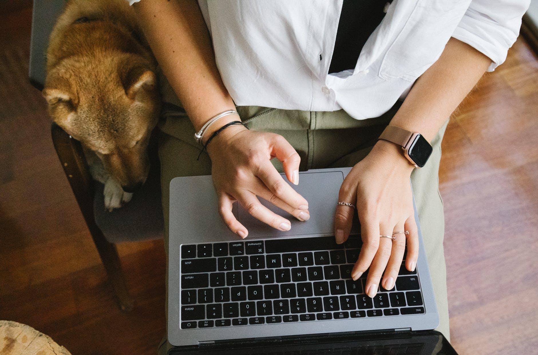 crop unrecognizable woman using laptop near cute obedient dog